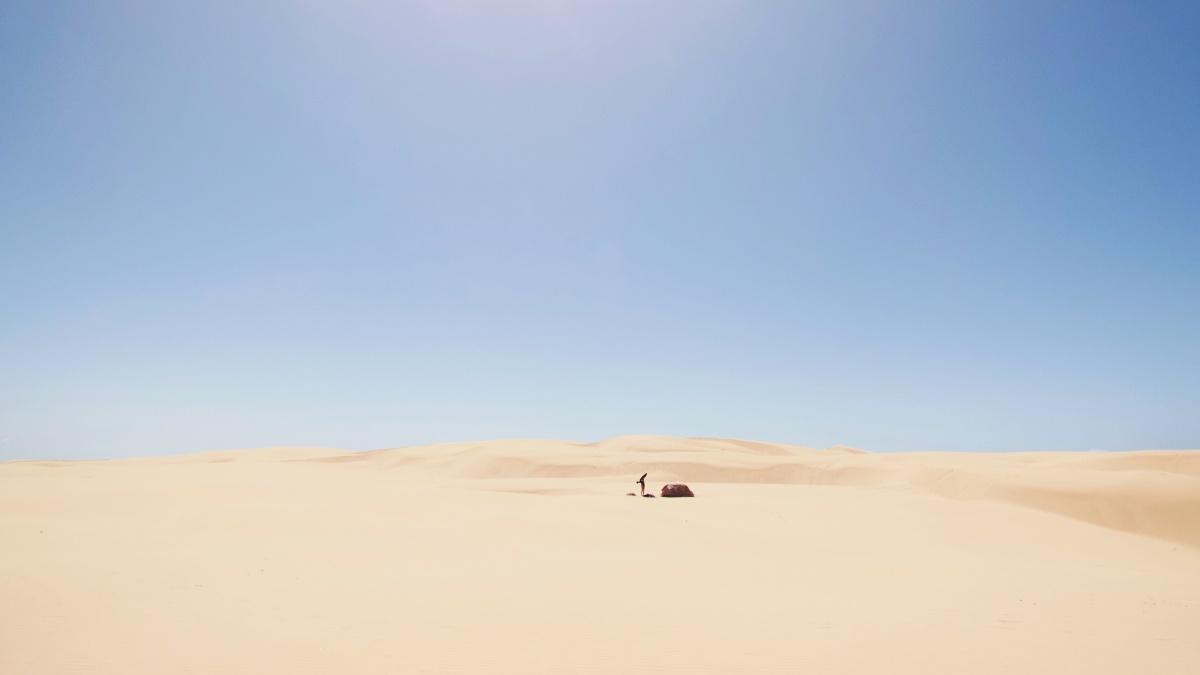 Pismo Dunes